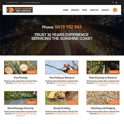 Website design Sunshine Coast unique affordable websites